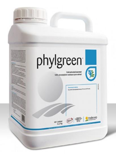 Phylgreen 100 ml
