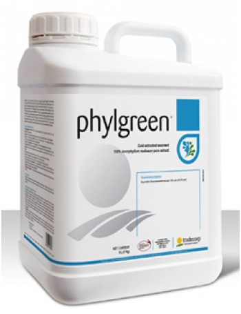 Phylgreen 100 ml