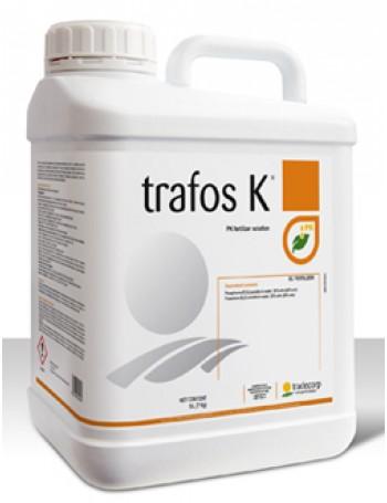 Trafos K 50 ml