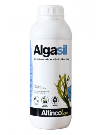 Algasil 5 L